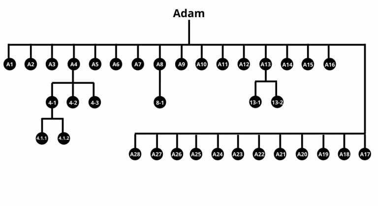 Your Haplogroup Branches - Adam